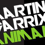 MARTIN GARRIX – ANIMALS   HOW IT GOT BIG