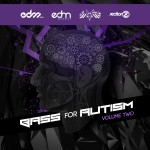 EXCLUSIVE INTERVIEW WITH JACK KIEFFER OF BASS FOR AUTISM
